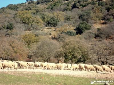 Sierras Subbéticas;Priego de Córdoba;senderismo por libre power walking madrid senderismo románti